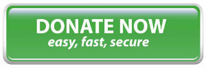 Donate Now (easy, fast, secure) button
