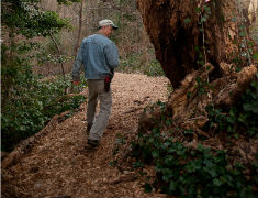 walking the perimeter path