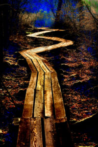 The Path (c) John Holliger 200x300
