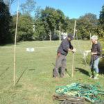 erecting deer fencing